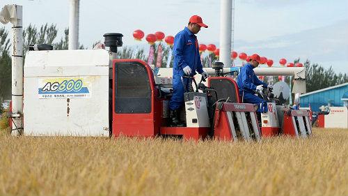 外媒关注中国设立农民丰收节:旨在强调农村工作重要性