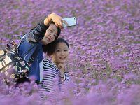 国庆假期全国共接待国内游客7.26亿人次