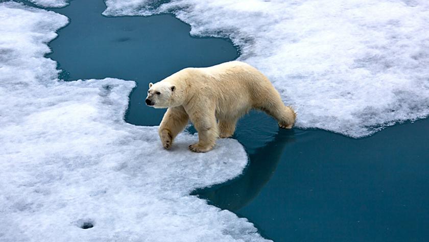 你怕了吗?专家称2030年就将面临灾难性气候变化临界点
