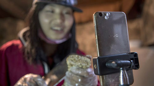 """""""土味""""视频直播走红中国网络 新媒:贵在鲜活不做作"""