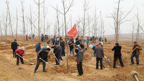 退耕还林资助中国规复绿色 西媒:中国停止荒原化结果显着