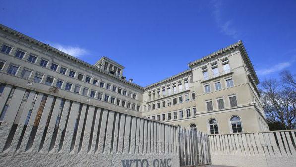 """英媒:12国+欧盟会议呼吁拯救""""停摆""""WTO 誓言改革规则"""