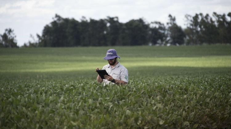巴西农业部:巴西今年对华大豆出口或创纪录 有望继续攀升