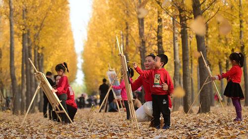 德媒关注中国学前教育新规:警惕资本侵入和伤害教育