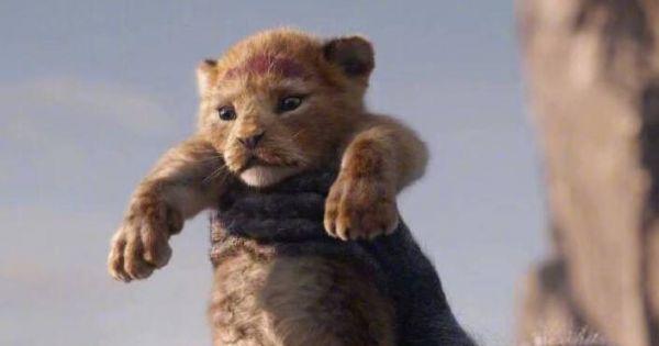 狮子王真人版2