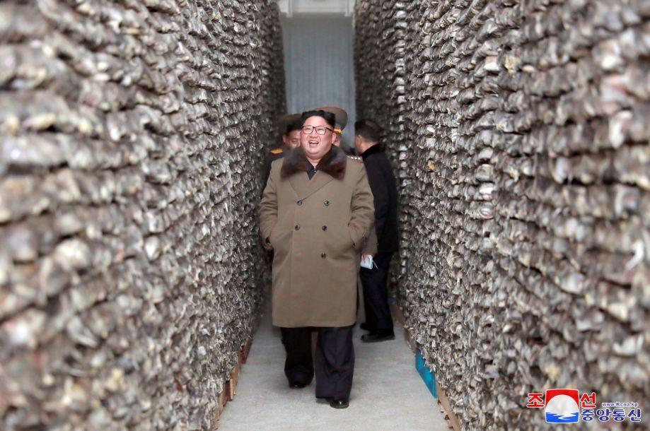 金正恩冬季视察渔业基地