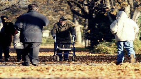 """台媒称德国""""孤独死""""问题严重:养老危机考验政府施政能力"""
