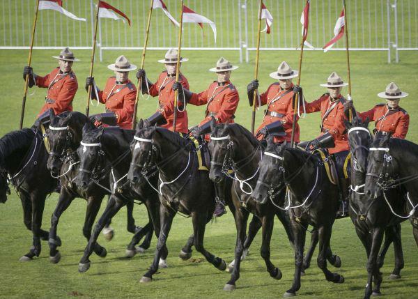 这个厉害了!加拿大皇家骑警兼职送外卖