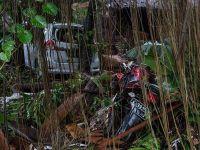 印尼巽他海峡海啸遇难者人数升至222人