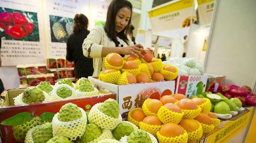 """蔡英文""""新南向""""有啥成果 台媒:11个月卖了900美元香蕉"""