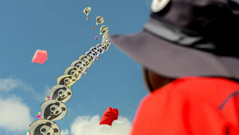 第24届巴西古当国际风筝节在马来西亚举行