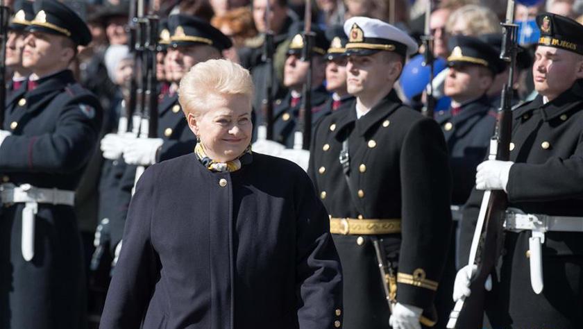 立陶宛纪念加入北约15周年