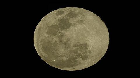 """兔子是如何""""登陆""""月球的?德媒:靠人类""""脑补"""""""