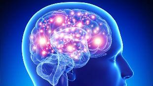 美媒:科学家确认新型痴呆症 或比阿尔茨海默病更严重