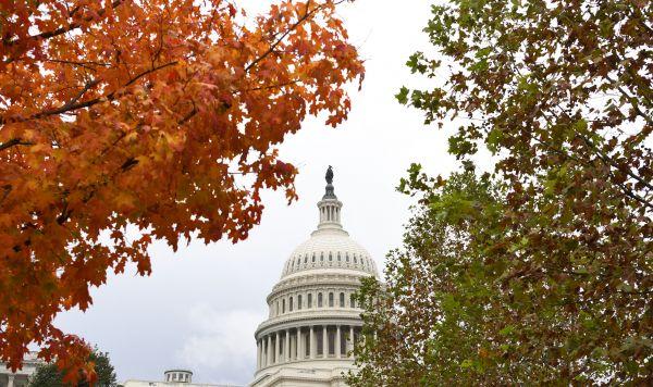 在美国首都华盛顿,国会山掩映在一半金黄、一半苍翠的树木之间。(新华社)