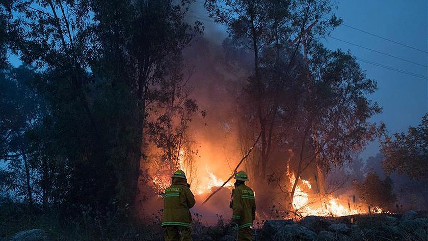 以色列一天20多起火灾 紧急寻求国际协助