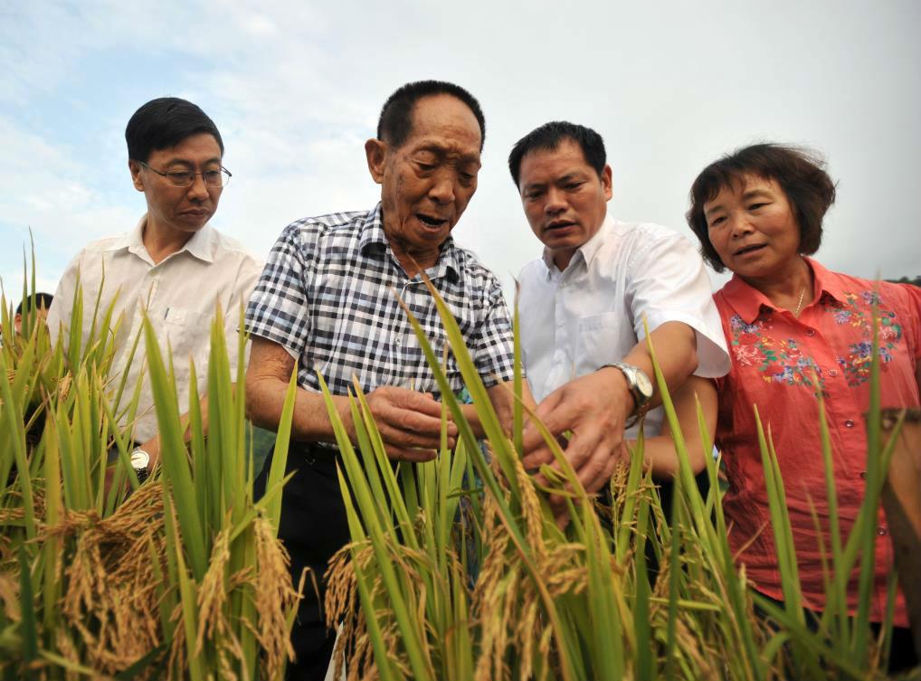外媒:海南成亚洲农业创新中心