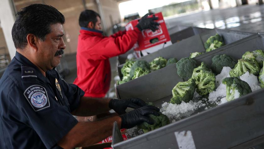 特朗普宣布對所有墨西哥輸美商品加征5%關稅