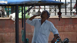 气温48摄氏度!印度大片地区遭遇热浪袭击_德国新闻_德国中文网