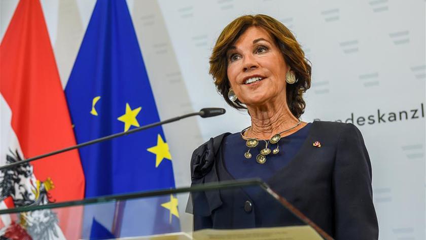 奧地利過渡政府宣誓就職