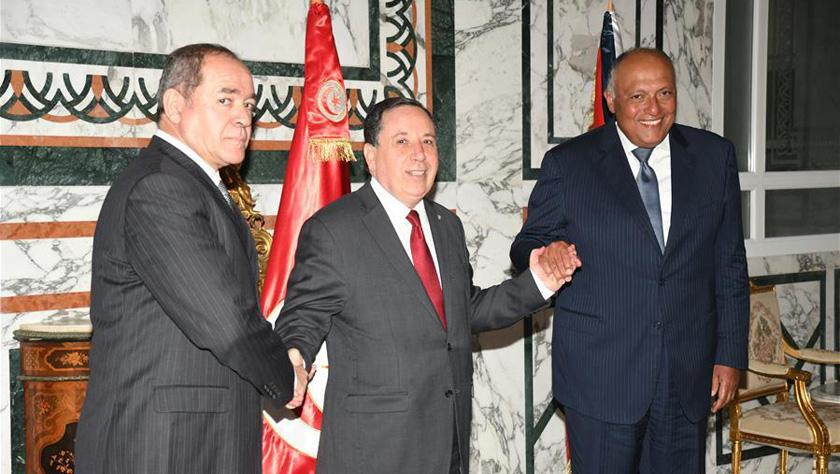 突尼斯、埃及和阿爾及利亞呼吁利比亞沖突各方停火