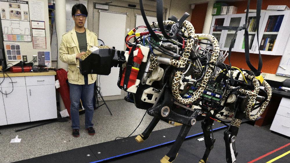 外媒:中美领跑人工智能发展新指数