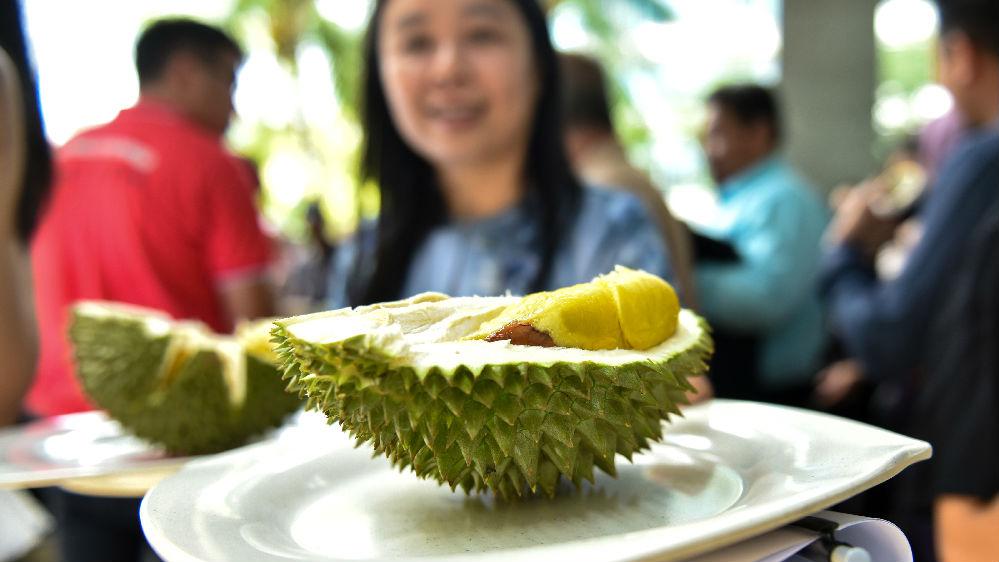 马来西亚对华榴莲出口量激增 港媒:预计每月达1000吨
