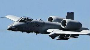 美战机遭飞鸟撞击 飞行员误投炸弹