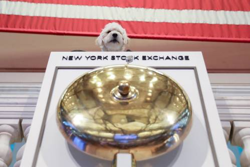 它成为中概股今年最大赴美IPO