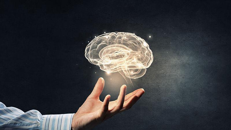 研究显示:记忆形成需雌激素参与