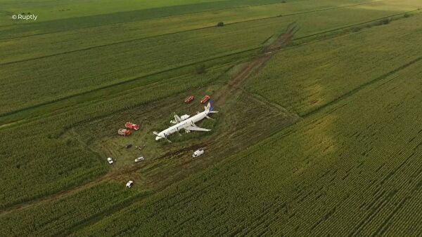 俄客机撞上鸟群成功迫降 机长临危不乱成英雄