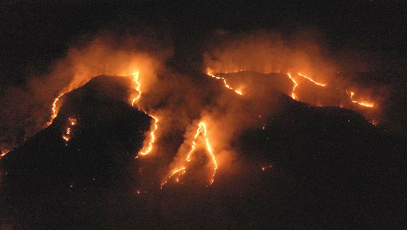巴西森林火灾数量激增 逾半数发生在亚马孙雨林