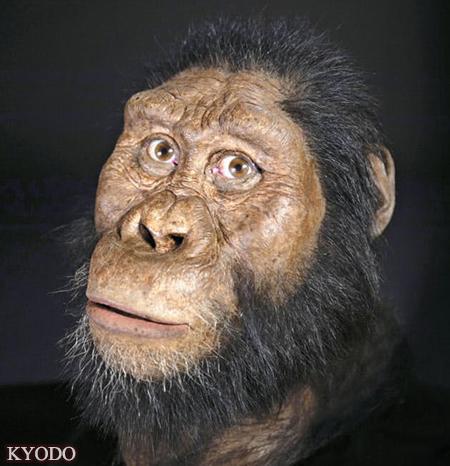 日媒:非洲发现380万年前猿人头骨化石 并复原出面容