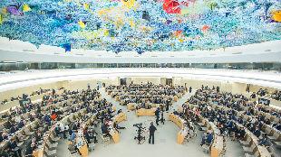 锐参考| 无惧乱港分子攻击!她们在联合国发声——