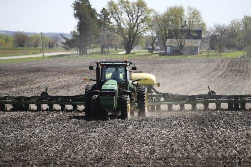 """无奈!美国农民放弃大豆玉米改""""种""""它……"""