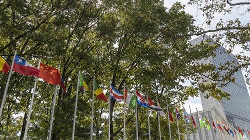 中國在聯合國影響力穩步提升 美媒:邁向全球大國的重要一步