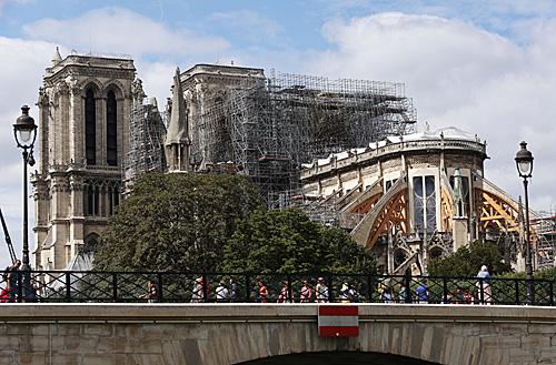 """<b>英媒:加纳""""水下森林""""可助巴黎重建圣母院</b>"""