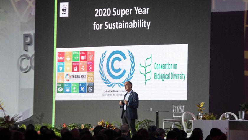 2019年联合国气候变化大会筹备会议在哥斯达黎加开幕