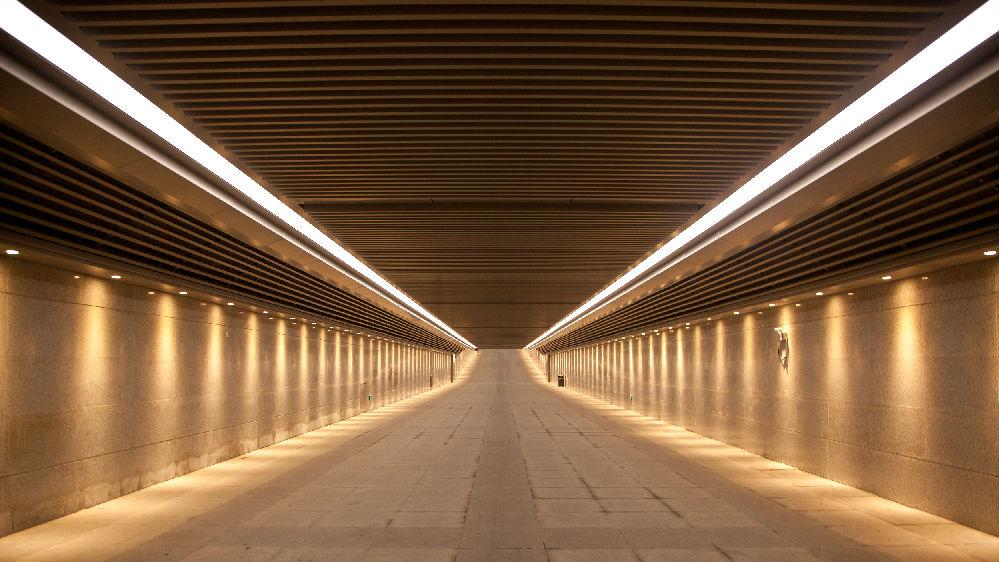 《憤怒的小鳥》之父與中企合作建海底隧道:恐懼中國沒有道理