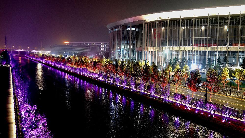 外媒評述:上海進博會展現中國巨大引力