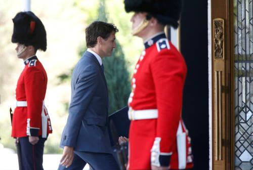 外媒:加拿大將恢復向中國出口肉類產品