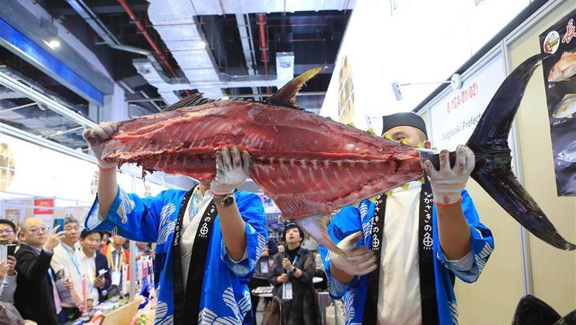 """庖丁解""""鱼"""":日本70公斤蓝鳍金枪鱼解体秀"""