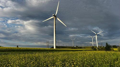 美能源咨询师:中国可再生能源市场不需要外国技术和资金