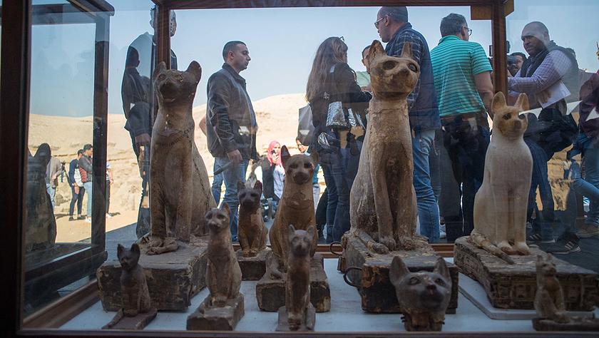埃及塞加拉发现数十具距今约2700年的动物木乃伊