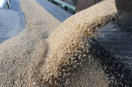 外媒:巴西正赶超美国成全球最大大豆生产国