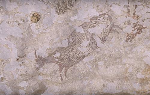 英媒:印尼发现已知人类最早壁画 距今约4.4万年