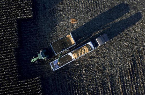 日媒:美国农民破产数量8年来最多