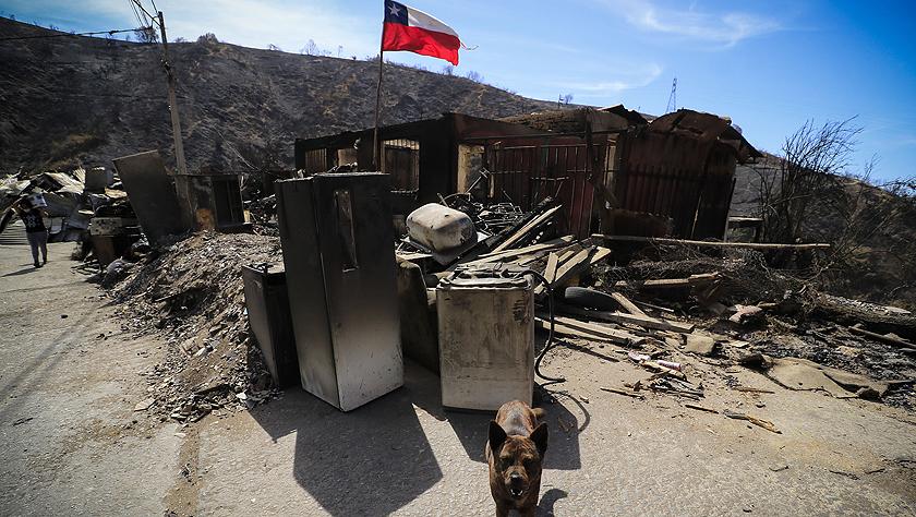 智利瓦爾帕萊索森林大火殃及200多所房屋