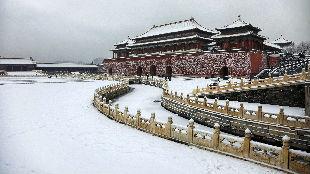 锐参考 | 面对远方来客,习主席这样谈及北京的第一场雪——