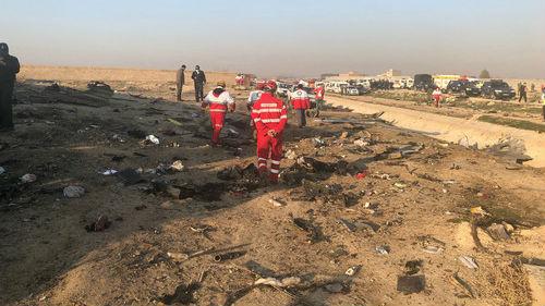 伊朗:失事波音客机黑匣子已找到 坠毁原因为发动机起火_德国新闻_德国中文网